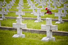 Free Military Cemetery Crosses Stock Photo - 19513730