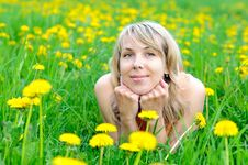 Free Blonde Woman On The Grass Royalty Free Stock Image - 19514786