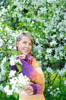 Free Woman In The Blooming Tree Royalty Free Stock Photo - 19515225
