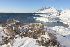 Free Antarctic Winter Landscape Royalty Free Stock Photography - 19515257