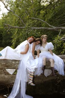 Free Depressed Brides Stock Photography - 19516032
