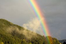 Free Forest Rainbow Royalty Free Stock Photography - 19516387