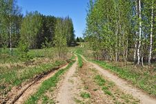 Free Country Dirt Road In New Forest Royalty Free Stock Photography - 19517747