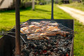 Free Chicken Grill In Summer Day Royalty Free Stock Images - 19524969