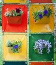 Free Hanging Flowers Stock Photo - 19526090