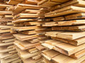 Free Snails Farm Planks Of Wood Stock Photos - 19527353