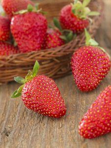Free Strawberries Royalty Free Stock Image - 19520556