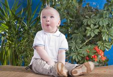 Free Baby Sits Royalty Free Stock Image - 19521736