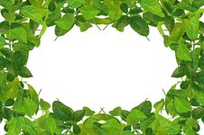 Free Creative Frame Made Of Spring Leaves Stock Photo - 19523350