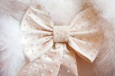 Beige Ribbon With Beads Stock Image