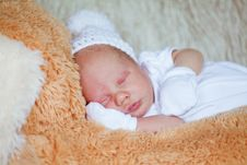 Free Adorable Newborn Baby Royalty Free Stock Photos - 19523988