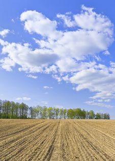 Free Spring Landscape Stock Images - 19524204