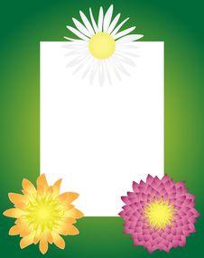 Free Gift Flower Frame Stock Images - 19524744