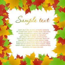Multicolored Maple Leaves Frame Stock Photos