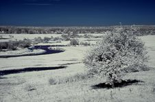 Free Landscape In The Infrared Royalty Free Stock Images - 19527709