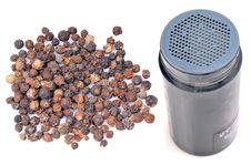 Free Black Pepper With Sprinkler Royalty Free Stock Image - 19528156