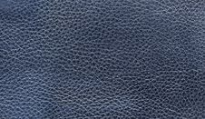 Free Leather Texture Stock Photos - 19528333
