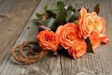 Free Orange Roses Stock Photos - 19528613