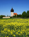 Free Church In Nature Royalty Free Stock Image - 19531146