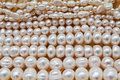 Free Pearls Royalty Free Stock Photography - 19538977