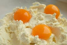 Free Yolks In Cottage Cheese Royalty Free Stock Photography - 19530307