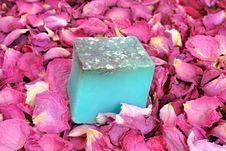 Free Soap Stock Image - 19530641