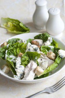 Free Chicken Salad Royalty Free Stock Photos - 19535058