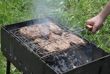 Free Pork Steak Prepared On Barbecue Grill Royalty Free Stock Photography - 19537017