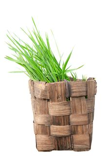 Free Isolated Old Basket With Grass Royalty Free Stock Images - 19539149