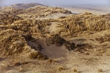 Free Dunes Stock Images - 19539384