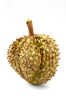 Free Durian Royalty Free Stock Photography - 19539517