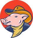Free Pig Cowboy Hat And Bandanna Stock Photos - 19544293