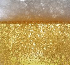 Free Dewy Beer Glass Bottle Texture Stock Images - 19545164
