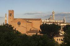 Free Siena S Monuments Stock Photos - 19545743