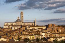 Free Siena Stock Photos - 19545803