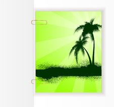 Background With The Palm Trees Royalty Free Stock Images