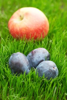 Free Three Plums And Apple Stock Photos - 19547413