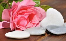 Free Rose And Hearts Of White Stone Royalty Free Stock Photography - 19548337