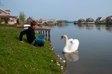 Free Boy And A Swan. Holland . Royalty Free Stock Images - 19548449