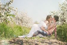 Free Beautiful Young Couple Kissing In The Flowering Ga Stock Images - 19549894