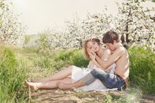 Free Beautiful Young Couple Kissing In The Flowering Ga Stock Photo - 19549930