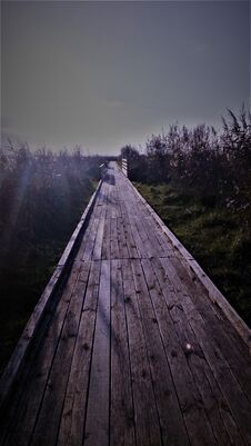 Free Panorama On A Path In The Marshes Stock Photography - 195451542