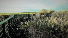Free Panorama On A Path In The Marshes Royalty Free Stock Photo - 195453565