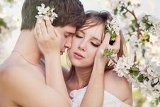 Free Beautiful Young Couple Kissing In The Flowering Ga Royalty Free Stock Image - 19550946