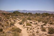 Free Mojave Desert Royalty Free Stock Image - 19552636