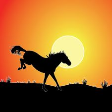 Free Horse Against Sunset. Royalty Free Stock Images - 19553009