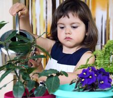 Girl Watering Flowers Royalty Free Stock Images