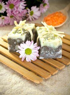 Free Soap. Stock Photos - 19554953