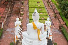 Free Buddha Images  In Ayuthaya Thailand Stock Photo - 19555070