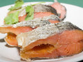 Free Trout Stock Photo - 19566350